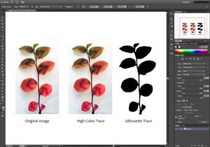 Capture d'écran du logiciel Adobe Illustrator CC 2017.1 21...