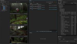 Capture d'ecran du logiciel Adobe Media Encoder CC 2020 14.4.0.35