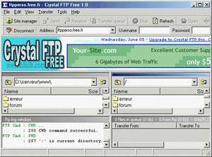 Capture d'écran du logiciel Crystal FTP Free 1.0