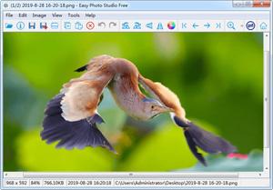 Capture d'ecran du logiciel Easy Photo Studio Free 4.0.1