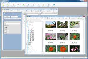 Capture d'écran du logiciel Gentibus CD 1.51 fr