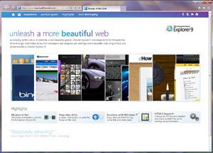 Capture d'écran du logiciel Internet Explorer 11.0.9600.16...