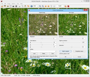 Capture d'ecran du logiciel IrfanView 4.52 fr