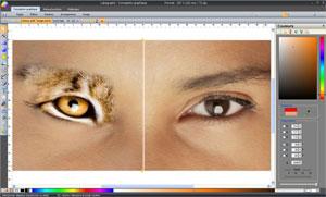 Capture d'ecran du logiciel Labography 8.04 fr