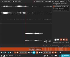 Capture d'écran du logiciel LosslessCut 1.10.0 - Windows