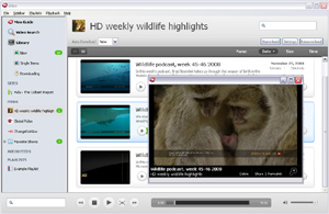 Capture d'écran du logiciel Miro 6.0 fr