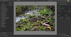 Capture d'écran du logiciel Nik Collection 1.2.11