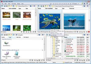 Capture d'ecran du logiciel Q-Dir Portable 8.91 fr