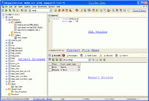 Capture d'écran du logiciel SQLyog Community Edition 13.0.1