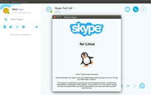 Capture d'ecran du logiciel Skype 8.22.0.2 fr - Linux
