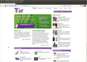 Capture d'ecran du logiciel Tor Browser 9.0.8 fr - Linux